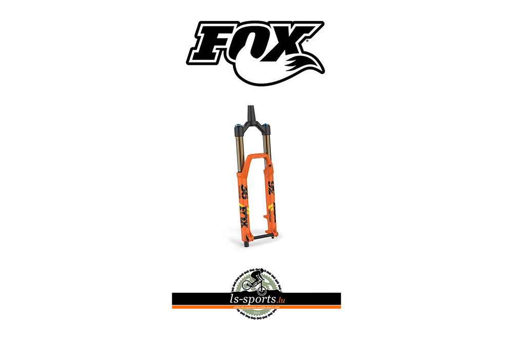 Fox, Bike Frok in our Bicycleshop