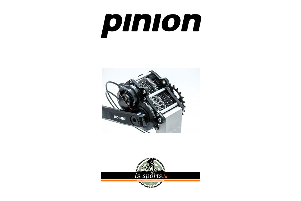 Pinion Service and spare parts for Luxembourg